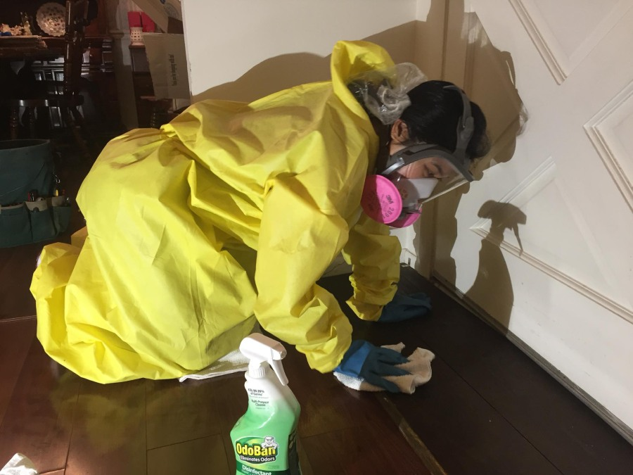 cleaner cleaning contamination